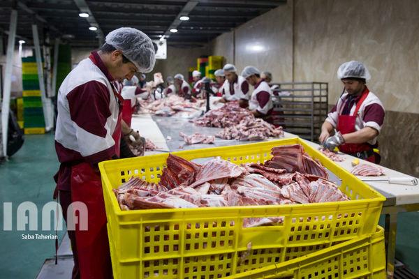 سالانه ۱۵ میلیون تن محصولات پروتئینی در کشور تولید میشود