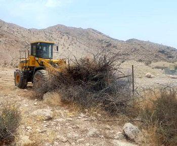 رفع تصرف از 3 هکتار عرصه های منابع طبیعی در قیرو کارزین