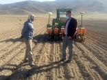 کاشت چغندر قند بهاره در اقلید ادامه دارد