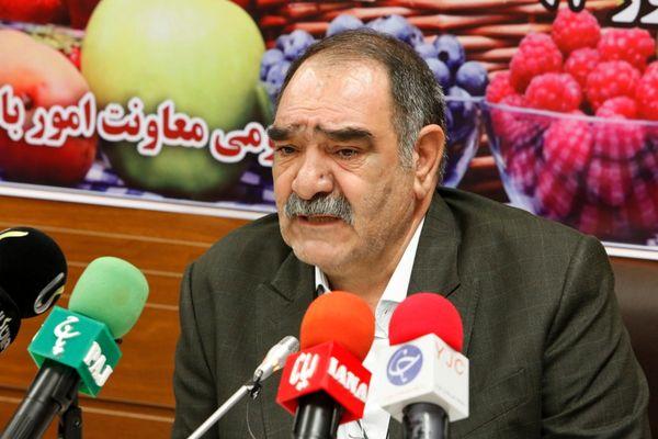90 درصد زعفران جهان در ایران تولید می شود