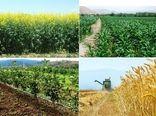 خراسان شمالی می تواند به یکی از قطب های صادراتی محصولات کشاورزی تبدیل شود