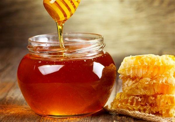 تولید سالانه ۱۸۰ تن عسل در خراسانجنوبی