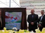 افتتاح 409 پروژه سازمان جنگلها در دهه فجر