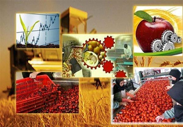 صنایع تبدیلی کشاورزی از تخصیص آب برخوردار می شوند