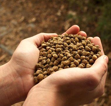 19 هزارتن خوراک دام در چهارمحال و بختیاری تولید شد