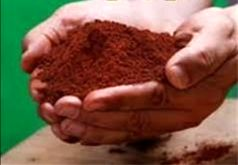 افزایش 150 درصدی تولید محصولات زراعی و 400 درصدی محصولات باغی