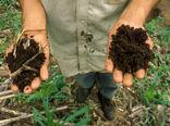 ذخیرهسازی و افزایش کربن خاک باید در اولویت قرار گیرد