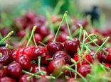 نقش ویژه صنایع تبدیلی و تکمیلی در کاهش ضایعات محصولات کشاورزی