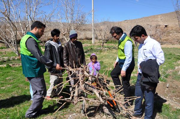 نظارت مستمر بر روند تولید محصولات کشاورزی در سیستان و بلوچستان