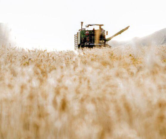 رشد ۳۴ درصدی بهرهگیری از ماشینآلات در کشاورزی نصف جهان