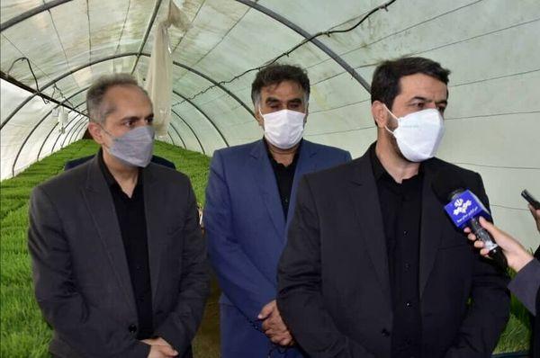 توسعه کشت علوفه هیدروپونیک در خراسان جنوبی