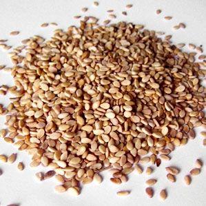 پیش بینی برداشت ۹۶۰ تن دانه روغنی کنجد از مزارع پلدشت در آذربایجان غربی
