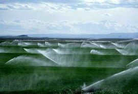 اقدامات بهینهسازی مصرف آب در میامی اجرا شد