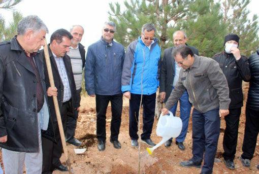 کاشت ۱۲ هزار نهال و توسعه ۲۰ هکتار جنگلکاری در تفرجگاه عینالی تبریز آغاز شد