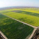 اجرای فاز دوم طرح ۵۵۰ هزار هکتاری استانهای خوزستان و ایلام