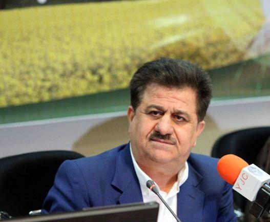 برداشت 101 میلیون شاخه گل نرگس از مزارع استان خوزستان