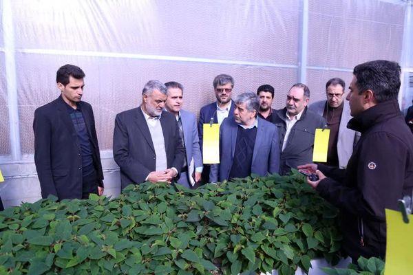 بازدید وزیر جهاد کشاورزی از پروژه های بخش کشاورزی شهرستان پاکدشت