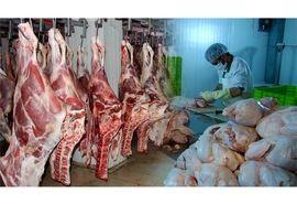 تولید 8600 تن گوشت سفید و قرمز در تنکابن