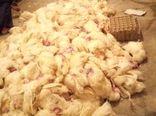 ۱۰ هزار قطعه مرغ به دلیل قطعی برق در بافق تلف شدند