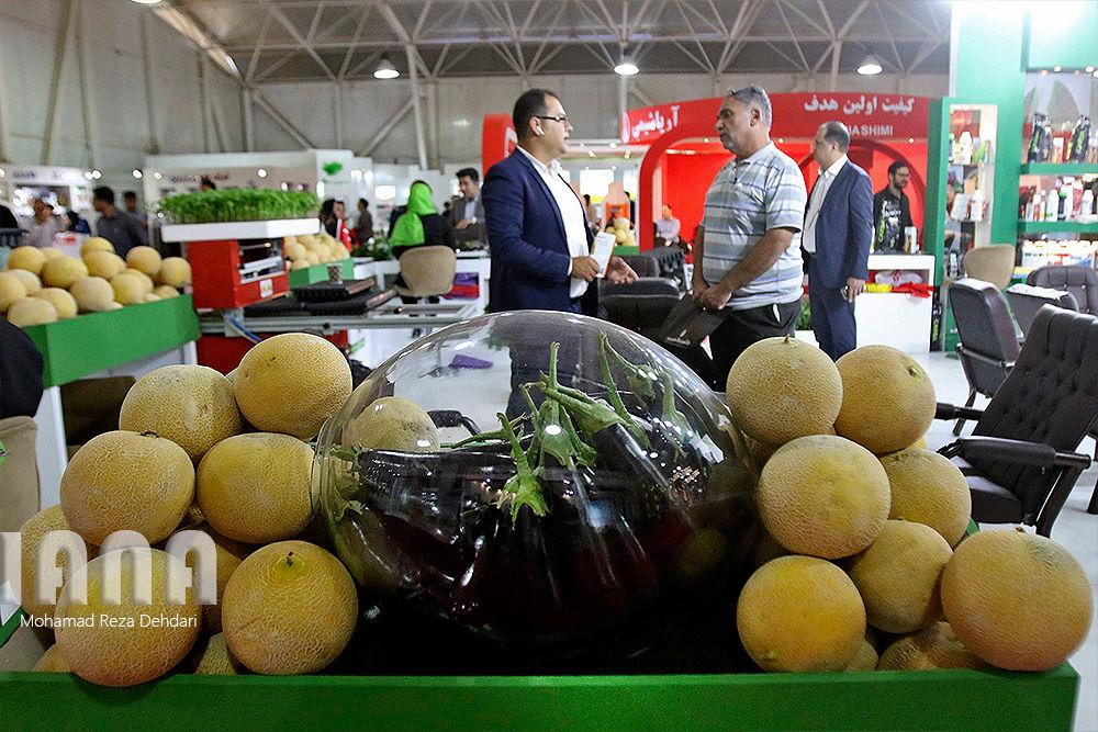 نمایشگاه کشاورزی شیراز