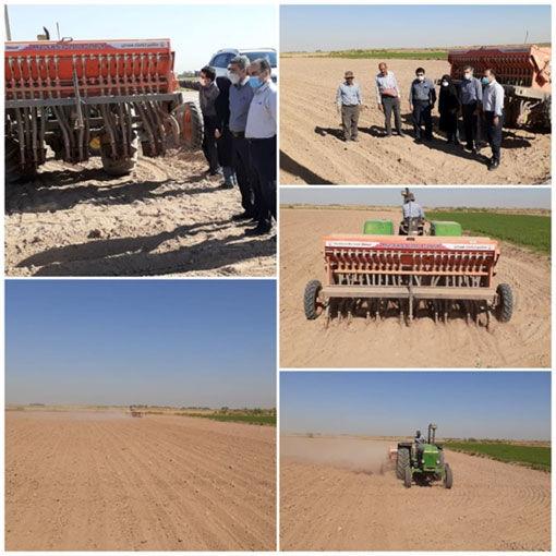 کاشت مزارع کلزا با دستگاه مکانیزه برای اولین بار در ایلخچی