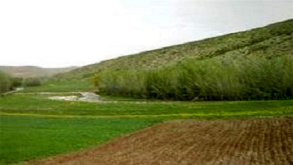 در نیمه نخست امسال۲ هزار و ۳۱۲ هکتار از اراضی شیروان رفع تداخل شد