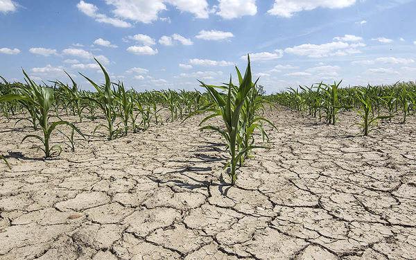 قهر کشاورزان با زمین