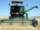 برداشت 25 هزار تن گندم در شهرستان اهر