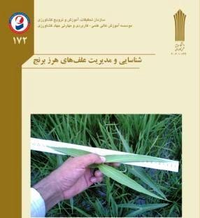کتاب شناسایی و مدیریت علف های هرز برنج منتشر شد