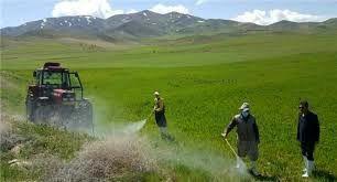 مبارزه با علف های هرز غلات در بخش صمصامی کوهرنگ