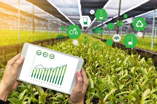 راهاندازی فاز نخست سیستم یکپارچه اطلاعات کشاورزی در خرداد سال جاری
