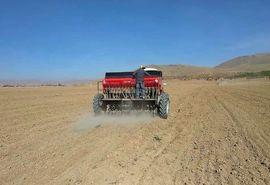 کشت محصولات پاییزه در شهرستان شهرکرد پایان یافت