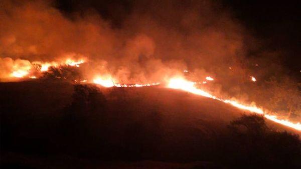 رقص شبانه آتش در جنگلهای بلوط دامنه زردکوه بختیاری