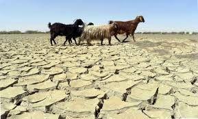 کشورهای دیگر با کمبود آب چگونه برخورد میکنند/آیا آب در ایران کم است؟