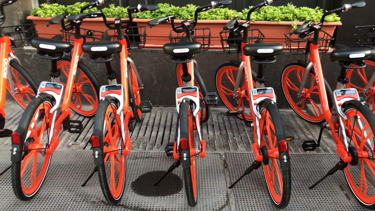 هر جا دوست داشتید دوچرخهتان را رها کنید!