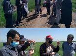 برگزاری ۶ دوره آموزشی به روش مدرسه در مزرعه در استان قزوین