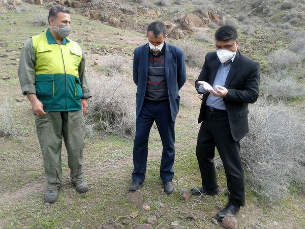 جلسه عملیات مبارزه با ملخ در بخش  طارم سفلی  برگزار شد