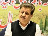 ۷۵ درصد تعهد استان خوزستان در زمینه کشت کلزا محقق شد