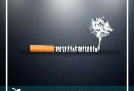 حمایت ستاد کشوری کنترل دخانیات از جایزه ویژه جشنواره فیلم سلامت