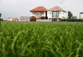 تشکیل یگان حفاظت از اراضی کشاورزی در راستای صیانت از امنیت غذایی