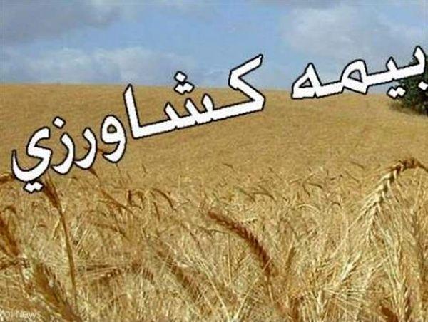 غرامت حق بیمه باغداران چهارمحال و بختیاری پرداخت شد