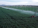 اجرای آبیاریتحتفشار در227 هزار هکتار از زمینهای غربایران