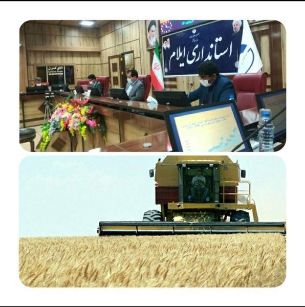 برگزاری جلسه هماهنگی برداشت غلات و دانه های روغنی در استان ایلام