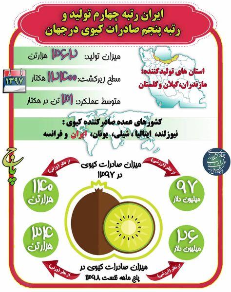 ایران رتبه چهارم تولید و رتبه پنجم صادرات کیوی در جهان