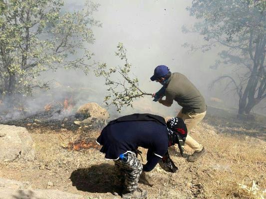 نجات جنگلهای زاگرس از چنگال حریق با دستان خالی