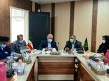 ضرورت برندسازی محصولات کشاورزی استان سیستان و بلوچستان