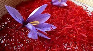 خرید بیش از ۲هزار کیلوگرم زعفران در خراسان شمالی