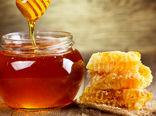 لزوم اتخاذ راهکار مناسب برای شناسنامهدار کردن فرآوردههای زنبورعسل