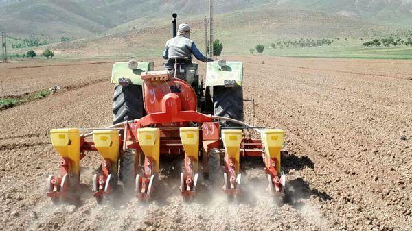 450 هکتار از اراضی کشاورزی شهرستان کیار به کشت چغندر قنداختصاص یافت