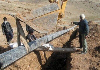 تمدید مصوبه شورای عالی اقتصاد درباره گازرسانی در بخش کشاورزی ضروری است